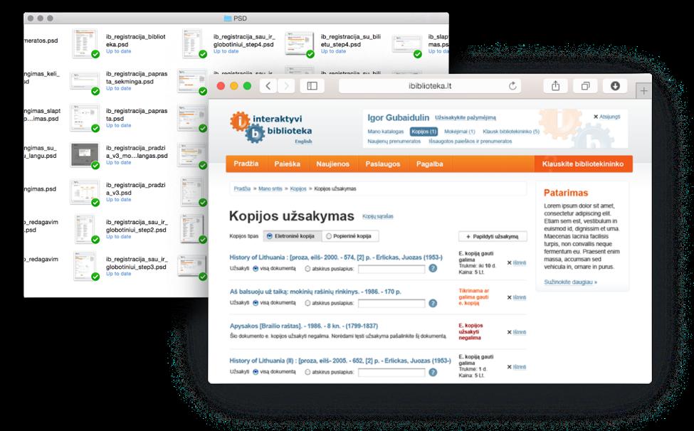 2010 Lithuania's e-library service